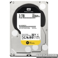 Western Digital RE 3TB 7200rpm 64MB WD3000FYYZ 3.5 SATA III