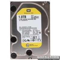 "Western Digital Re 1TB 7200rpm 128MB WD1004FBYZ 3.5"" SATA III"