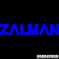 Zalman ZM-F2 FDB (SF)