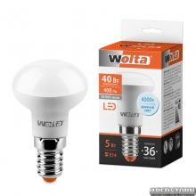 Лампа светодиодная 25S39R5E14