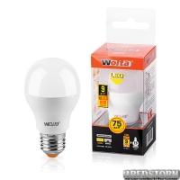 Лампа светодиодная 25S55BL9E27