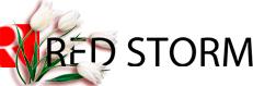 Red Storm магазин компьютерной техники